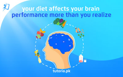 Your diet affects your brain performance